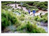 * 3422米高的幸福 ~ 合歡山 秋の遊 (5):TW-Blog-Pic-28(2)-140.jpg