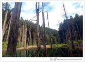 * 美景 總在千山萬水之後 ~ 水漾森林 (3):TW-Blog-23(2)-43.jpg