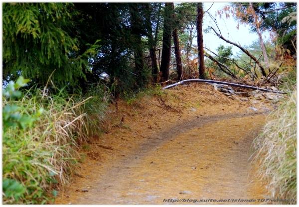 * 山風15度C吹拂 ~ 合歡溪 步道 (3):TAT-Blog-22-166.jpg