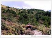 * 3422米高的幸福 ~ 合歡山 秋の遊 (4):TW-Blog-Pic-28(2)-67.jpg