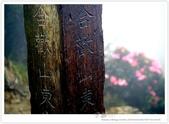 * 3422米高的幸福 ~ 合歡山 秋の遊 (3):TW-Blog-Pic-28(2)-14.jpg