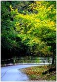 * 山風15度C 吹拂 ~ 合歡溪 步道 (5) :