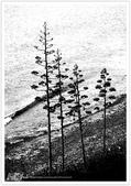 我從另一角度 ~ 望見 澎湖 馬公の美 & 自己的心情:WA-Blog-13-5-062.jpg