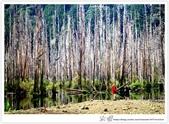 * 美景 總在千山萬水之後 ~ 水漾森林 (3):TW-Blog-23(2)-07.jpg