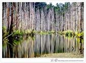 * 美景 總在千山萬水之後 ~ 水漾森林 (3):TW-Blog-23(2)-09.jpg