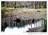 * 美景 總在千山萬水之後 ~ 水漾森林 (3):TW-Blog-23(2)-14.jpg