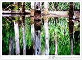* 美景 總在千山萬水之後 ~ 水漾森林 (3):TW-Blog-23(2)-20.jpg