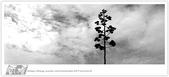 我從另一角度 ~ 望見 澎湖 馬公の美 & 自己的心情:WA-Blog-13-5-025.jpg