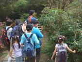 山嵐班:990323虎山稜線步道 104.JPG