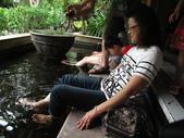 20120810宜蘭慢活:IMG_7245溫泉魚.JPG