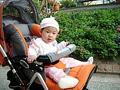 2010/1/17梅嶺&曾文水庫:IMG_8662.JPG