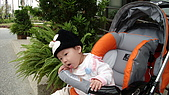 2009/11/19凹仔底森林公園半日遊:IMG_8259.JPG