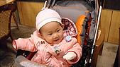 2010元旦新社之旅:IMG_8424.JPG