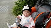 2009/11/19凹仔底森林公園半日遊:IMG_8260.JPG