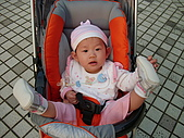2010/1/17梅嶺&曾文水庫:IMG_8677.JPG