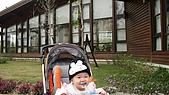 2009/11/19凹仔底森林公園半日遊:IMG_8261.JPG