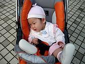 2010/1/17梅嶺&曾文水庫:IMG_8679.JPG