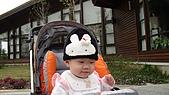 2009/11/19凹仔底森林公園半日遊:IMG_8262.JPG