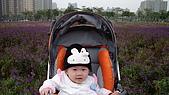2009/11/19凹仔底森林公園半日遊:IMG_8249.JPG