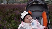 2009/11/19凹仔底森林公園半日遊:IMG_8250.JPG