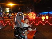 2010/3/6燈會:DSC00286.JPG
