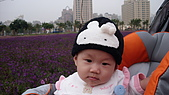 2009/11/19凹仔底森林公園半日遊:IMG_8252.JPG