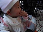 2010/1/17梅嶺&曾文水庫:IMG_8650.JPG