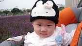 2009/11/19凹仔底森林公園半日遊:IMG_8254.JPG