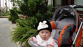 2009/11/19凹仔底森林公園半日遊:IMG_8258.JPG