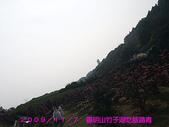 2009/11/7陽明山竹子湖吃飯踏青:DSCF7272.jpg