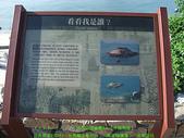 2008/7/12㊣卡蹓馬祖DAY2*遊北竿!:DSCF0696.jpg