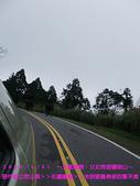 2009/1/31天氣晴朗父女同遊陽明山!:DSCF2190 拷貝.jpg