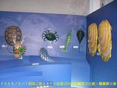 2008/2/1-2/3流浪之旅高雄&佳里:CIMG0505 拷貝.jpg