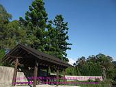 2010/8/20★桃園縣★龜山鄉/大溪☺:DSCF0248 拷貝.jpg
