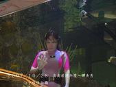 2007/10/28高島屋週年慶~餵魚秀:IMGP0207 拷貝.jpg