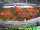 2007/9/22宜莘家火山岩烤肉趴:IMGP0074.jpg