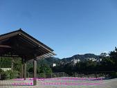 2010/8/20★桃園縣★龜山鄉/大溪☺:DSCF0249 拷貝.jpg