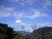2007/1/13~1/14嘉義下鄉之旅:IMGP0168.jpg