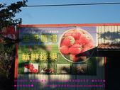 2010/8/20★桃園縣★龜山鄉/大溪☺:春天可以採草莓