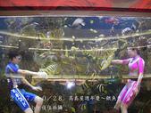2007/10/28高島屋週年慶~餵魚秀:IMGP0188 拷貝.jpg