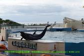 2018/10/22~10/24生日沖繩旅遊:P1000792 拷貝.jpg