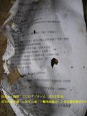 2007/8/4跟咖哩一日遊:IMGP0126.jpg