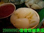 2009/9/5佳佳玩咖東區美食團:DSCN5385 拷貝.jpg