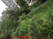 2009/8/11北投圖書館&附近:DSCF6555 拷貝.jpg