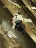 2007/2/20京華城:IMGP0157拷貝.jpg