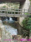 2009/11/7陽明山竹子湖吃飯踏青:DSCF7261.jpg