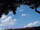 2010/8/20★桃園縣★龜山鄉/大溪☺:DSCF0220 拷貝.jpg