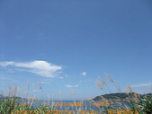 2008/7/13㊣卡蹓馬祖DAY3*遊南竿!:DSCF1042.jpg