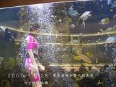 2007/10/28高島屋週年慶~餵魚秀:IMGP0201 拷貝.jpg