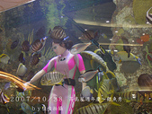 2007/10/28高島屋週年慶~餵魚秀:IMGP0197 拷貝.jpg